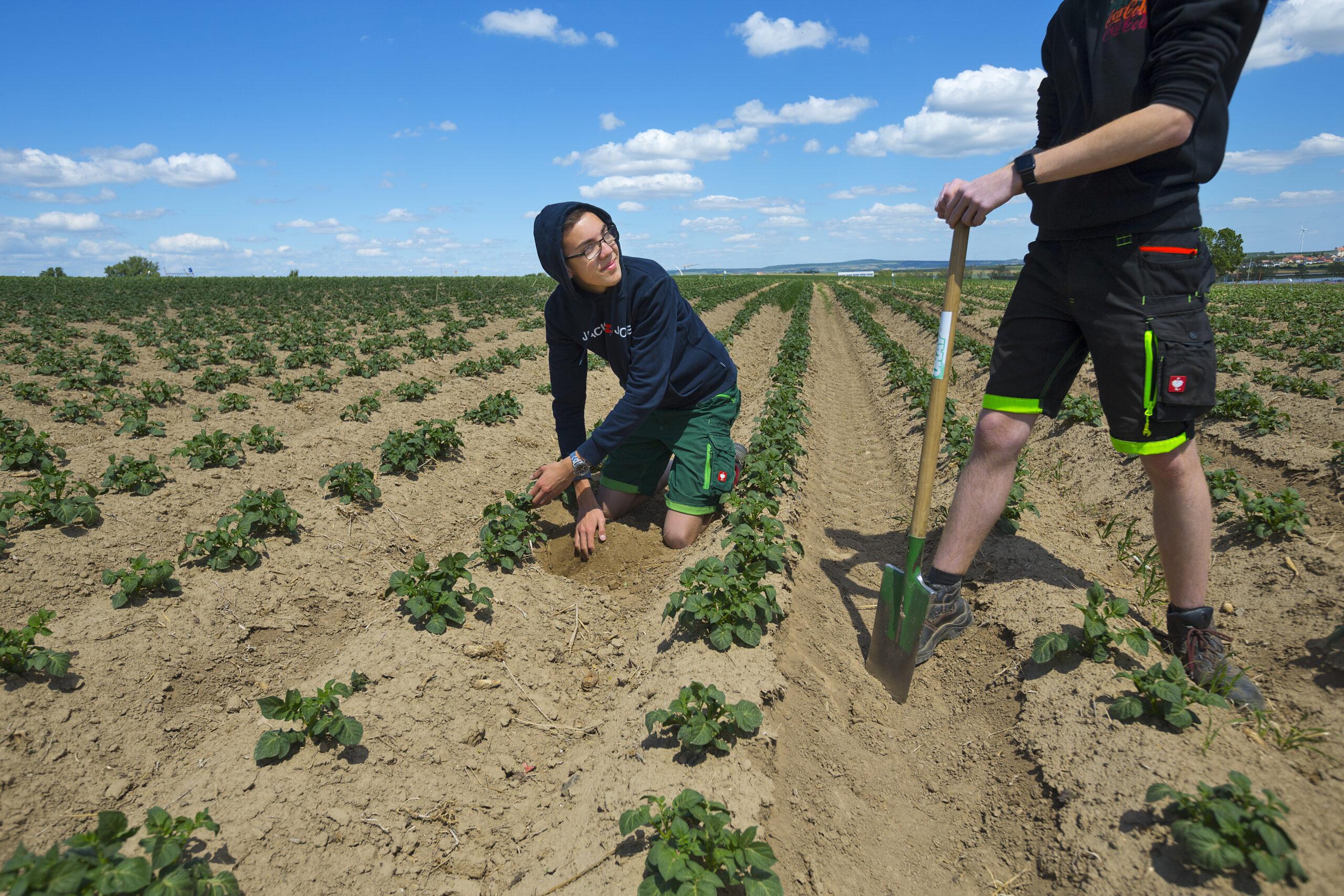 Erlerne Landwirtschaft am Puls der Zeit!