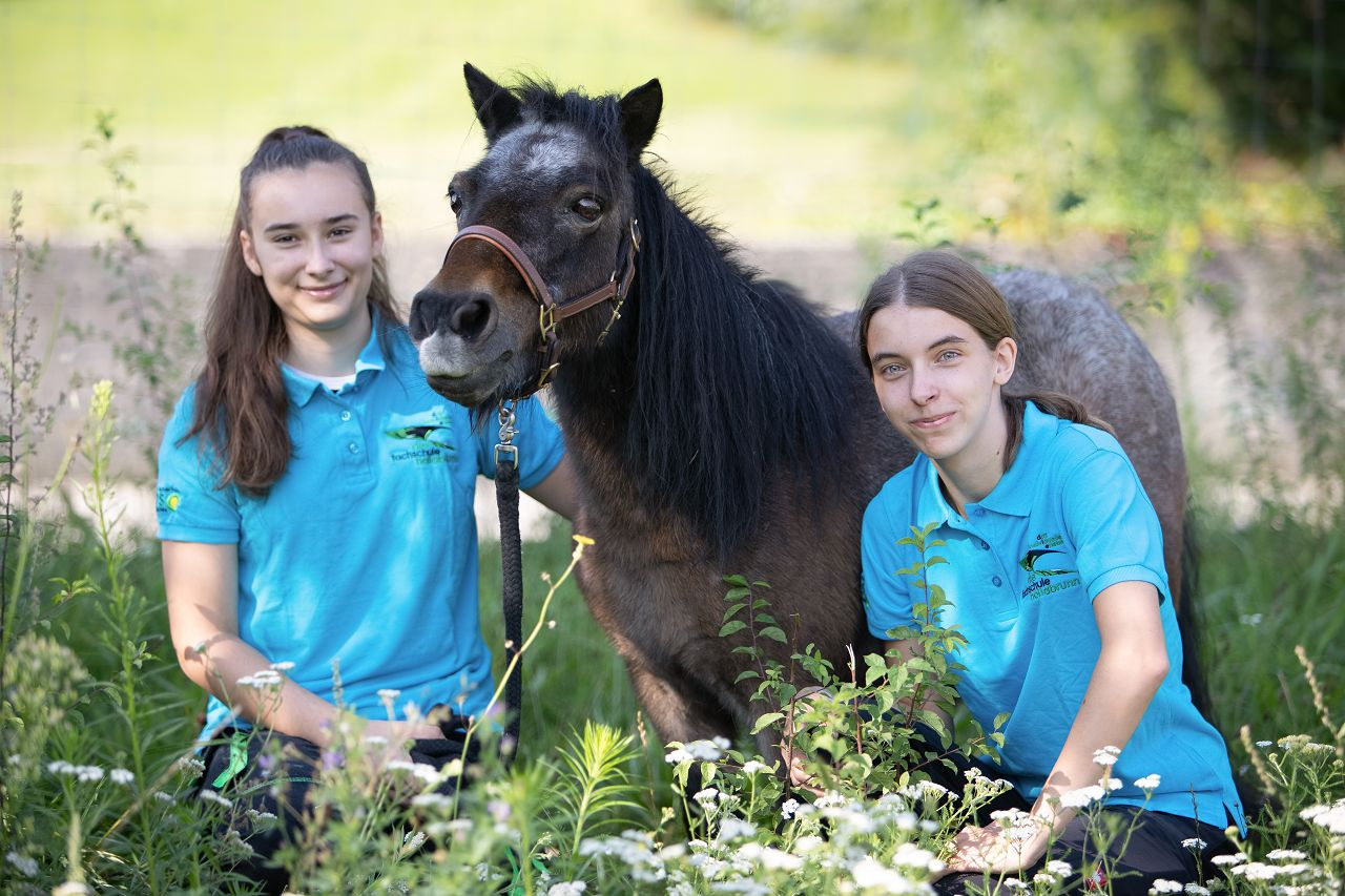 Werde Tierpfleger*in, Tierarztassistent*in oder Tiertrainer*in in unserer Lehrberuf ersetzenden Ausbildung!